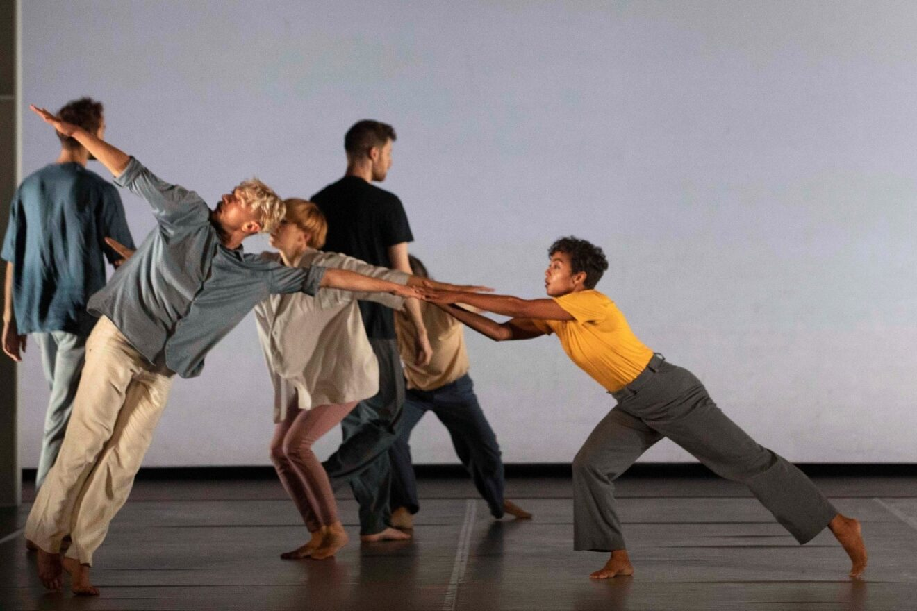 DDF Company in Residence (2017-2019)