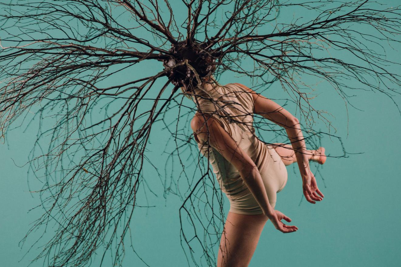 Awakening an ancient Greek myth – The Misunderstanding of Myrrha by Junk Ensemble