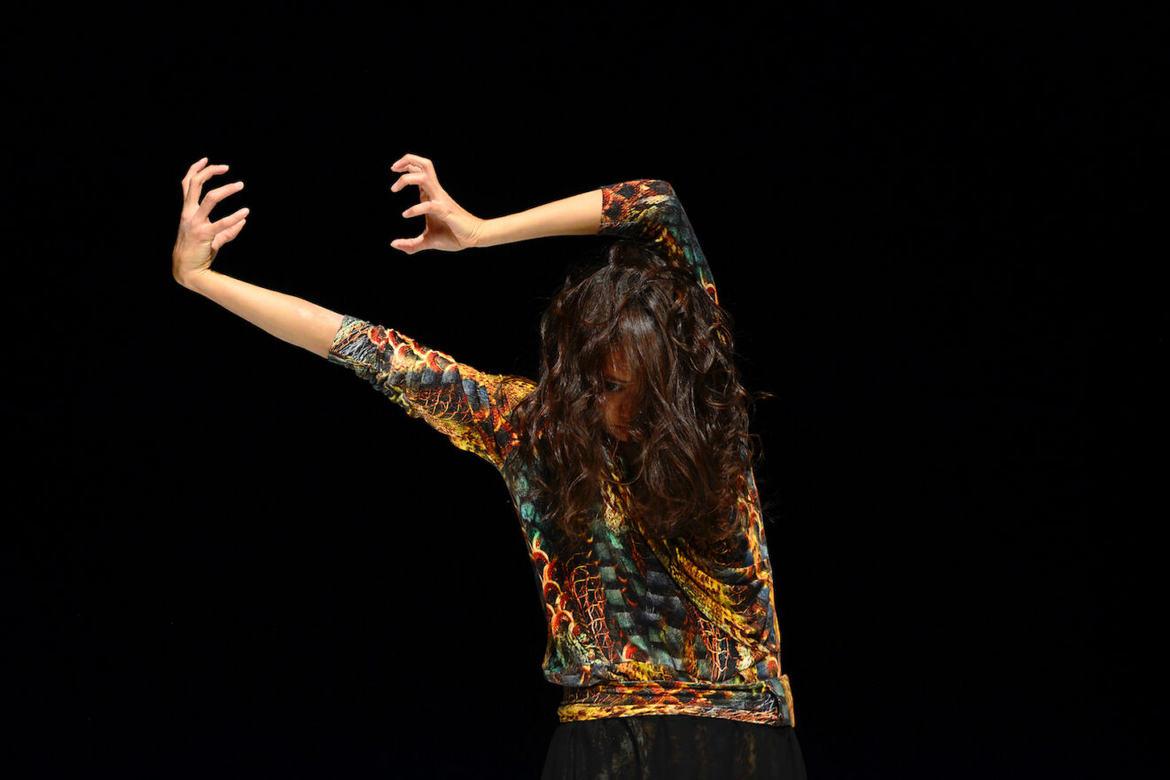 Dive in and discover dance with WHAT NEXT dance festival